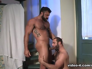rogan richards paco tourist video