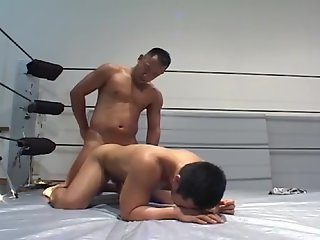 asian twinks: wrestling