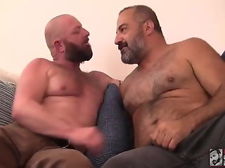 daddy bear love